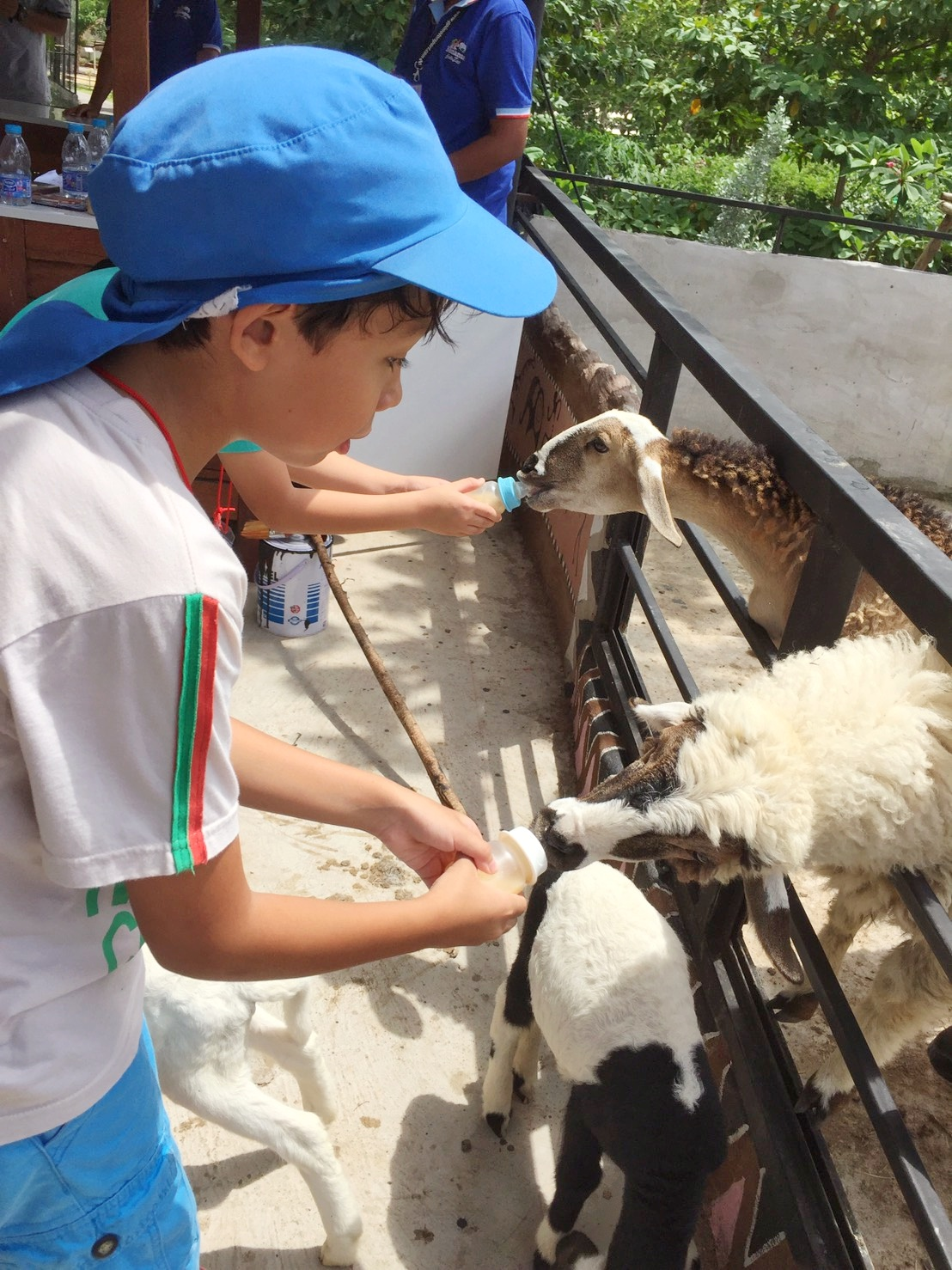 Khao-Yai-Zoo-